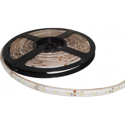 BANDA LED 60x3528 4.8W IP68